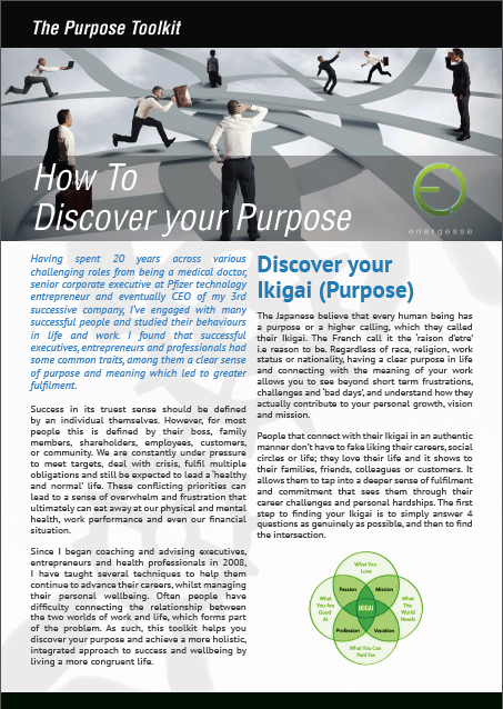 purpose toolkit